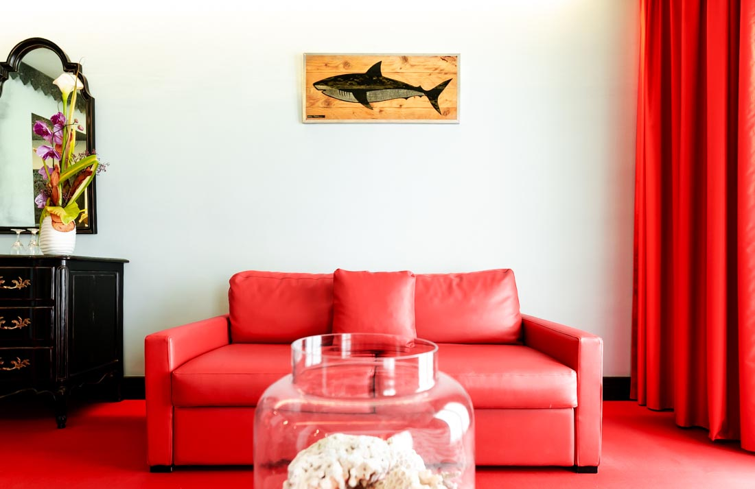 tableau-cerclage requin