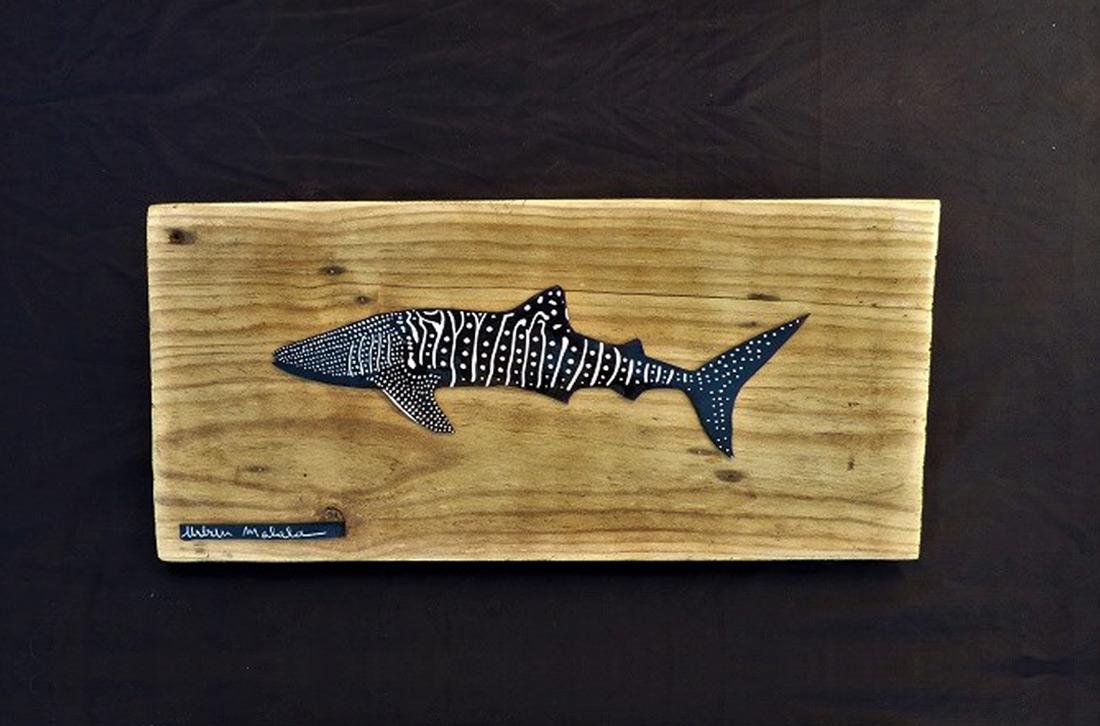 requin baleine - r6